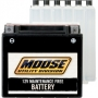 YAMAHA MOOSE BATTERY